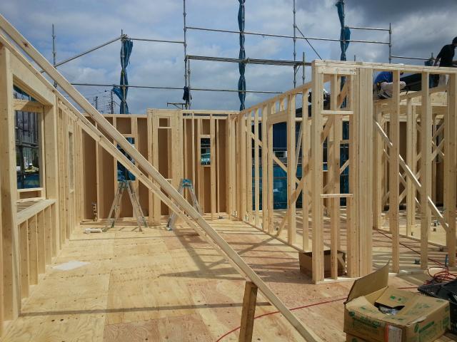 1階壁建て開始